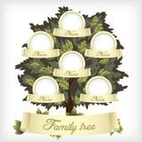 фамильное дерев дерево Стоковые Фото