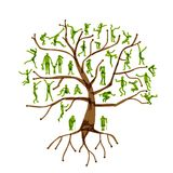 Фамильное дерев дерево, родственники, силуэты людей Стоковые Изображения RF