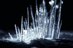 Фантазия осветила сосульки зимы в снеге на темной ноче Стоковое фото RF