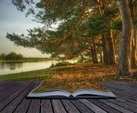 фантазия принципиальной схемы книги творческая волшебная Стоковое фото RF