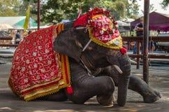 Фантазия elephent в Таиланде Стоковые Изображения