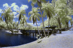 Фантазия Shah Alam Selangor озера стоковое фото