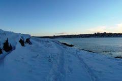 Фантастические Исландия и столица Reykjavik Стоковая Фотография RF
