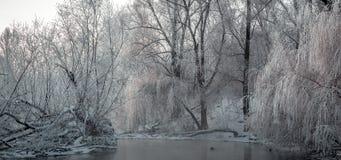 Фантастический ландшафт зимы стоковое изображение
