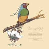 Фантастический вектор птицы Стоковые Изображения