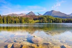 Фантастический взгляд высоких гор и зеленого леса Стоковое Изображение RF