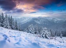 Фантастический восход солнца зимы в прикарпатских горах с крышкой снега Стоковое Фото