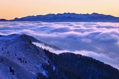 Фантастический ландшафт зимы вечера и утра Красочное небо overcast Австрия, Европа Дерево мира красоты волшебным покрытое снегом стоковое фото rf