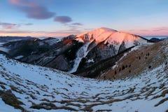 Фантастический ландшафт зимы вечера и утра Красочное небо overcast Австрия, Европа Дерево мира красоты волшебным покрытое снегом стоковое изображение