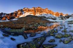 Фантастический ландшафт зимы вечера и утра Красочное небо overcast Австрия, Европа Дерево мира красоты волшебным покрытое снегом стоковая фотография rf