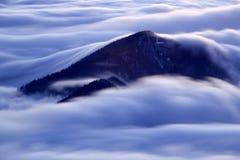 Фантастический ландшафт зимы вечера и утра Красочное небо overcast Австрия, Европа Дерево мира красоты волшебным покрытое снегом стоковое фото