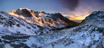 Фантастический ландшафт зимы вечера и утра Красочное небо overcast Австрия, Европа Дерево мира красоты волшебным покрытое снегом стоковые фотографии rf