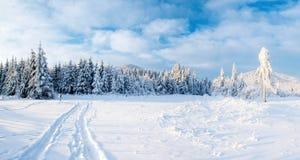 Фантастический ландшафт зимы, дорога, что-то водя в горы Морозный солнечный день в горах В стоковые фото