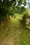 Фантастический облицеванный путь на трассе Encantau Camin в совете Llanes Природа, перемещение, ландшафты, леса, фантазия стоковые изображения