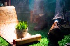 Фантастический перечень на лужайке около старого ботинка Стоковое Изображение