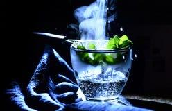 фантастический чай мяты стоковое фото