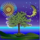 Фантастичная ноча Стоковые Фотографии RF