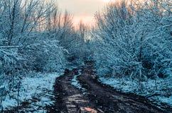 Фантастичная русская зима 777 Стоковое Фото