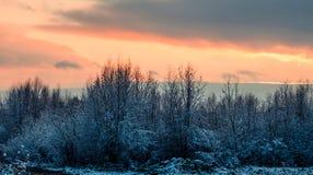 Фантастичная русская зима 777 стоковая фотография rf