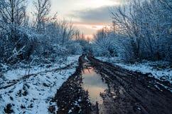 Фантастичная русская зима 777 стоковые изображения