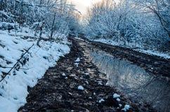 Фантастичная русская зима 777 стоковые фото
