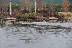 Фантастичное озеро Стоковая Фотография RF