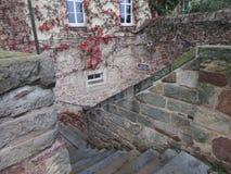 Фантастично красивая старая лестница покрашенного одичалого камня в каменщике стоковое фото