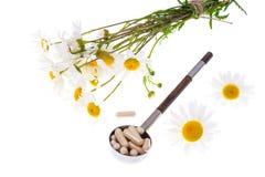 Фармация стоцвета лекарственного растения в капсулах Стоковые Фото