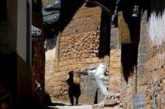 фарфор столетий расквартировывает старый камень shue Стоковое Фото