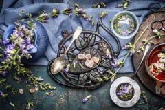 фарфор dishes свежее время чая клубник фарфора Подготовка травяного чая с свежими цветками, одичалыми травами и винтажными инстру Стоковая Фотография
