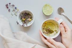 фарфор dishes свежее время чая клубник фарфора Руки держа чашку горячего чая Высушите травяной чай, известку и ложку на серой пре Стоковая Фотография RF