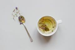 фарфор dishes свежее время чая клубник фарфора Чашка горячего травяного чая и сухого чая на серой предпосылке, взгляд сверху Стоковое Изображение