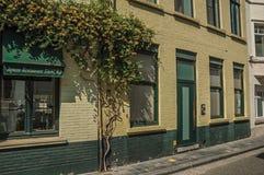 Фасад кирпича домов в солнечной улице Брюгге Стоковое Изображение