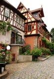 фасад цветет дом старая Стоковая Фотография