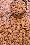 фасоли выходят белизну вышед на рынок на рынок органического сбывания vegetable Стоковые Фото