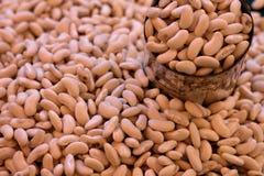 фасоли выходят белизну вышед на рынок на рынок органического сбывания vegetable Стоковые Фотографии RF