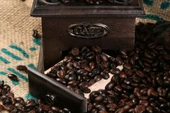 фасоли закрывают кофе вверх стоковые изображения rf