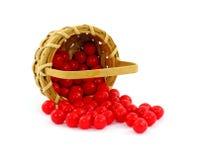 фасоли корзины jelly переполняя красный цвет Стоковое Изображение RF