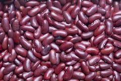 фасоли обрамляют полный красный цвет почки Стоковая Фотография RF