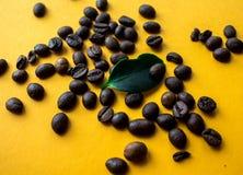 Фасоли Coffe и зеленые лист на желтой предпосылке Стоковое Фото