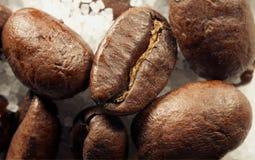 Фасоли Coffe Стоковые Изображения RF
