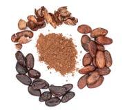 Фасоль и бурый порох какао изолированные на белом взгляд сверху предпосылки Стоковая Фотография RF