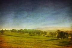 фасонируемый ландшафт старый Стоковые Изображения RF