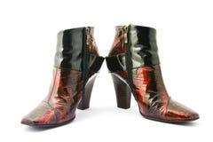фасонируйте женские ботинки Стоковое Изображение RF