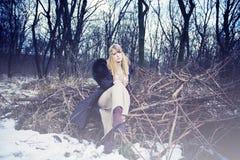 фасонируйте женщину зимы Стоковые Изображения