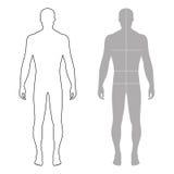 Фасонируйте диаграмму законспектированную человеком шаблона силуэт с маркированным телом иллюстрация штока
