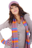 фасонируйте портрету сексуальную женщину зимы Стоковая Фотография