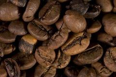 фасоли закрывают кофе вверх Стоковое фото RF
