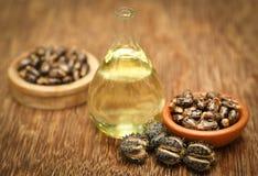 Фасоли и масло рицинуса стоковое изображение