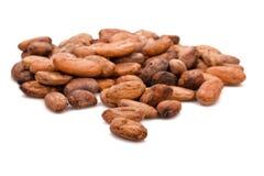 Фасоли какао Стоковое Фото